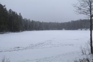 Travelnews.lv dodas 32 km pārgājienā Rendas apkārtnē Kuldīgas novadā 17