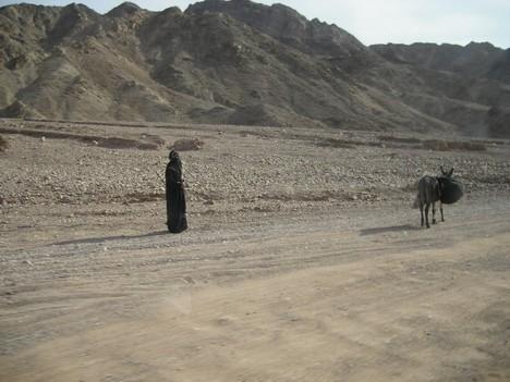 Beduīns