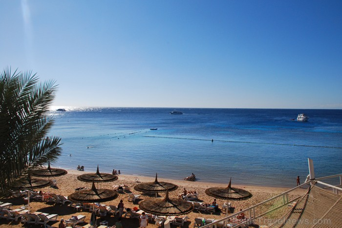 Viesnīcas REEF OASIS BEACH RESORT pludmale  - www.novatours.lv