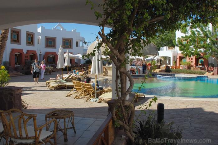 Mājīgs un ērts pagalms ar baseinu - www.novatours.lv
