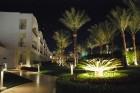 Izgaismots ir katrs krūmiņš un koks  - www.novatours.lv 13