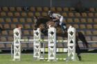 Sacensības jāšanas sportā šķēršļu pārvarēšanā pulcē kuplu dalībnieku skaitu 11