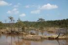 Travelnews.lv kopā ar «Dabas Sporta Zāli» dodas pārgājienā pa Ķemeru Nacionālo parku 25
