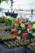 Restorāns «Hercogs» Ķīpsalā atklāj unikālu vasaras terasi ar lielisku skatu uz Vecrīgu 7