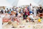 Jelgavā  aizvadīts jau 12. Starptautiskais smilšu skulptūru festivāls 2