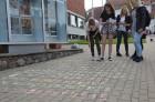 Skolēni Valmierā aicina atzīmēt Dzejas dienas 3