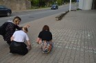 Skolēni Valmierā aicina atzīmēt Dzejas dienas 4
