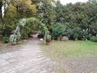 Rīgas parki un dārzi pārklājas rudens zeltā 14