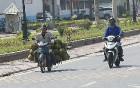Travelnews.lv ceļo no Halongas līča uz Vjetnamas galvaspilsētu Hanoju. Sadarbībā ar 365 brīvdienas un Turkish Airlines 36