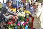 Stādu tirgus Madonas pilsētas centrālajā laukumā jau ir kļuvis par jauku tradīciju un īstu pamudinājumu uzsākt praktiskus pavasara darbus piemājas dār 5