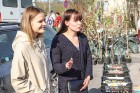 Stādu tirgus Madonas pilsētas centrālajā laukumā jau ir kļuvis par jauku tradīciju un īstu pamudinājumu uzsākt praktiskus pavasara darbus piemājas dār 6