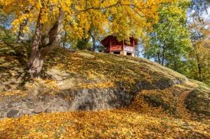 Valmieras pilsēta rotājas rudens zeltā 17