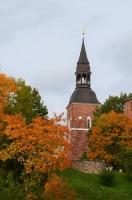 Valmieras pilsēta rotājas rudens zeltā 19