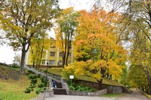 Valmieras pilsēta rotājas rudens zeltā 24