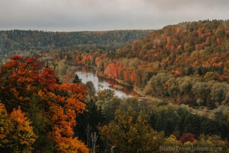 Sigulda var dižoties daudzveidīgām rudens ainavām pilsētā un tās apkārtnē