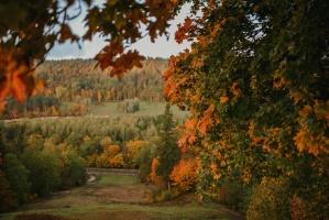 Sigulda var dižoties daudzveidīgām rudens ainavām pilsētā un tās apkārtnē 5
