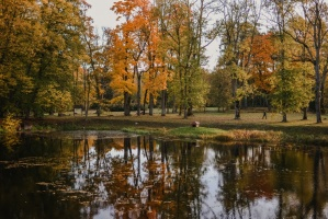Sigulda var dižoties daudzveidīgām rudens ainavām pilsētā un tās apkārtnē 15