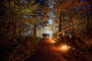 Vienkoču parkā norisinājās Uguns Nakts, kura mērķis ir vienu īso rudens dienu padarīt ilgāk gaišu, dot iespēju uzlādēt sevi ar sveču gaismu un siltumu 22