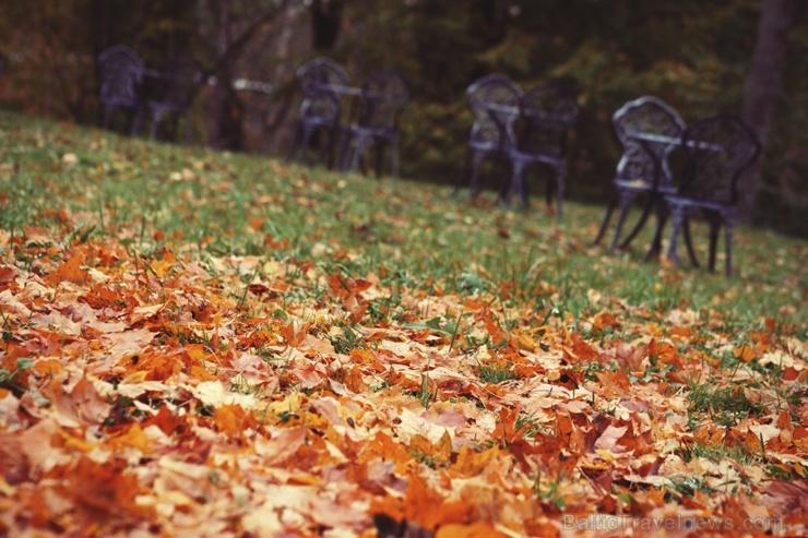 Gulbenē un tās apkārtnē rudens krāšņi izrotājis dabu, ļaujot ikvienam izbaudīt pasakainas ainavas