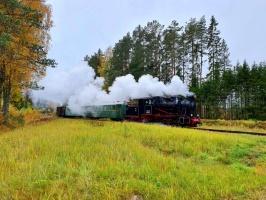 Gulbenē un tās apkārtnē rudens krāšņi izrotājis dabu, ļaujot ikvienam izbaudīt pasakainas ainavas 4