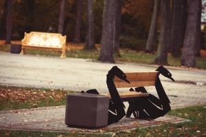 Gulbenē un tās apkārtnē rudens krāšņi izrotājis dabu, ļaujot ikvienam izbaudīt pasakainas ainavas 10