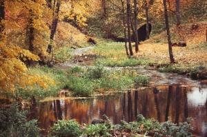 Gulbenē un tās apkārtnē rudens krāšņi izrotājis dabu, ļaujot ikvienam izbaudīt pasakainas ainavas 11