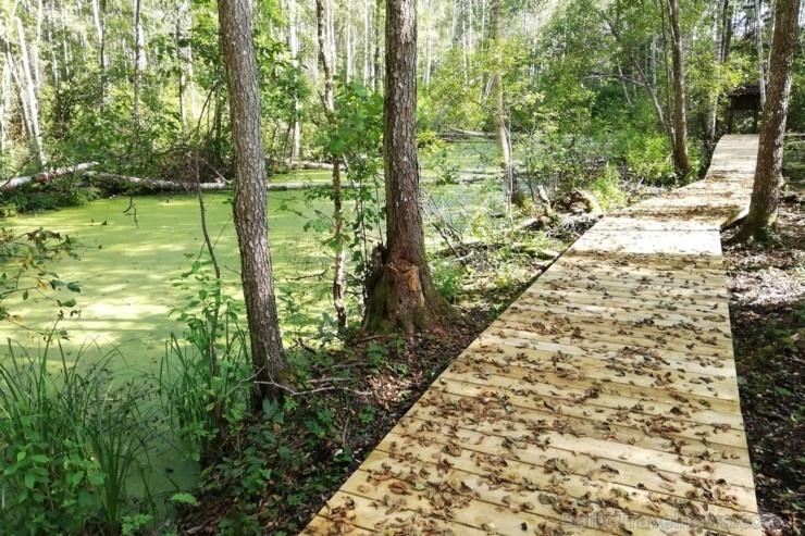 Jaundomes dabas taka Dagdā lieliski papildinās Jaundomes muižas Vides izglītības centra piedāvājumu -  tūristi varēs ne tikai iepazīt ezera pasauli ek 268540